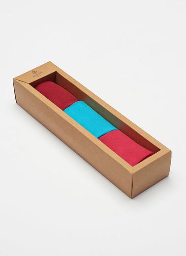 Katia & Bony 3 Lü Paket Family Kadın Çorap Seti Renkli